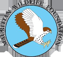 logo-mwf